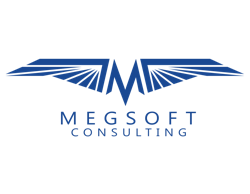 Megsoft Consulting